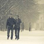 snowy-resonance