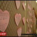 shaen-hearts-300x200